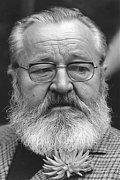 Jan Werich filmography.