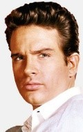 Warren Beatty - wallpapers.