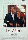 Le zebre pictures.