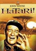 Hatari! pictures.