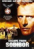 Escape from Sobibor pictures.