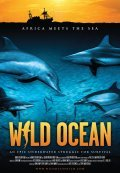 Wild Ocean pictures.