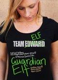 Guardian Elf - wallpapers.