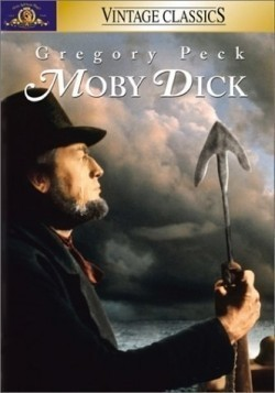 Moby Dick pictures.