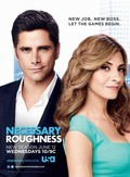 Necessary Roughness pictures.