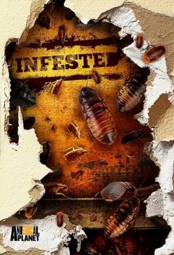 Infested! - wallpapers.
