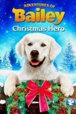 Adventures of Bailey: Christmas Hero pictures.