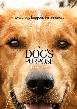 A Dog's Purpose - wallpapers.