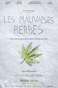 Les mauvaises herbes - wallpapers.