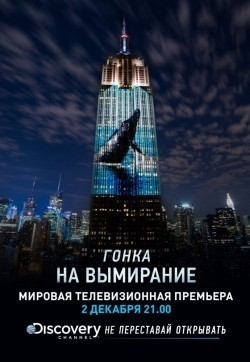Racing Extinction pictures.