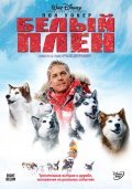 Eight Below pictures.