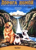 Homeward Bound: The Incredible Journey - wallpapers.