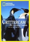 Crittercam pictures.