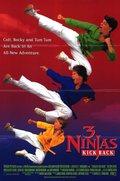 3 Ninjas Kick Back - wallpapers.