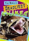 World's Deadliest Snakes - wallpapers.