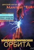 Mantek Chia. mikrokosmicheskaya orbita. - wallpapers.