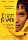 Desert Flower - wallpapers.