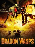 Dragon Wasps pictures.