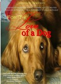 For the Love of a Dog - wallpapers.