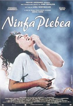 Ninfa plebea pictures.