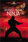 Revenge Of The Ninja pictures.